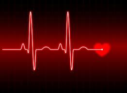 cardiac function evaluations